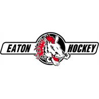 HC Eaton Pardubice logo vector logo