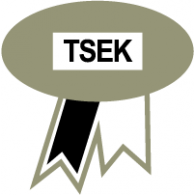 TSEK logo vector logo