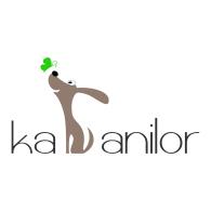 KA-ANILOR logo vector logo