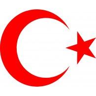 Ayyıldız Bayrak Vector logo vector logo