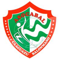 Balonmano logo vector logo