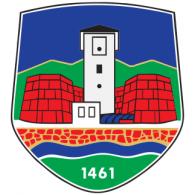 Novi Pazar logo vector logo