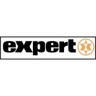 Expert logo vector logo