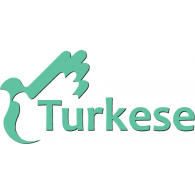 Turkese logo vector logo