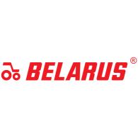 Belarus logo vector logo